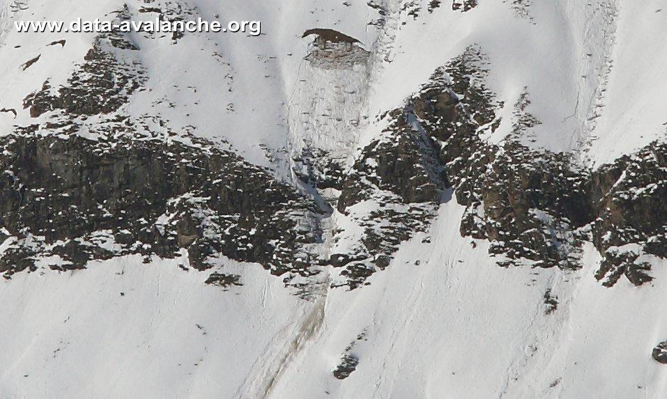 Avalanche Haute Maurienne, secteur Pointe de Méan Martin, Buffettes - Bonnneval sur Arc - Photo 1