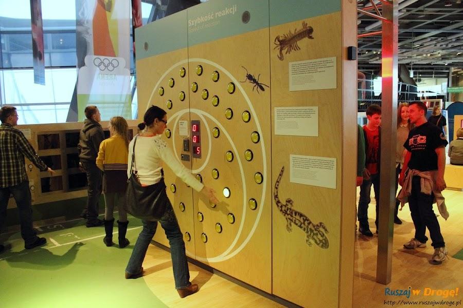 centrum nauki kopernik w Warszawie: sprawdzanie refleksu Kasi