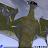 jrow chatman avatar image
