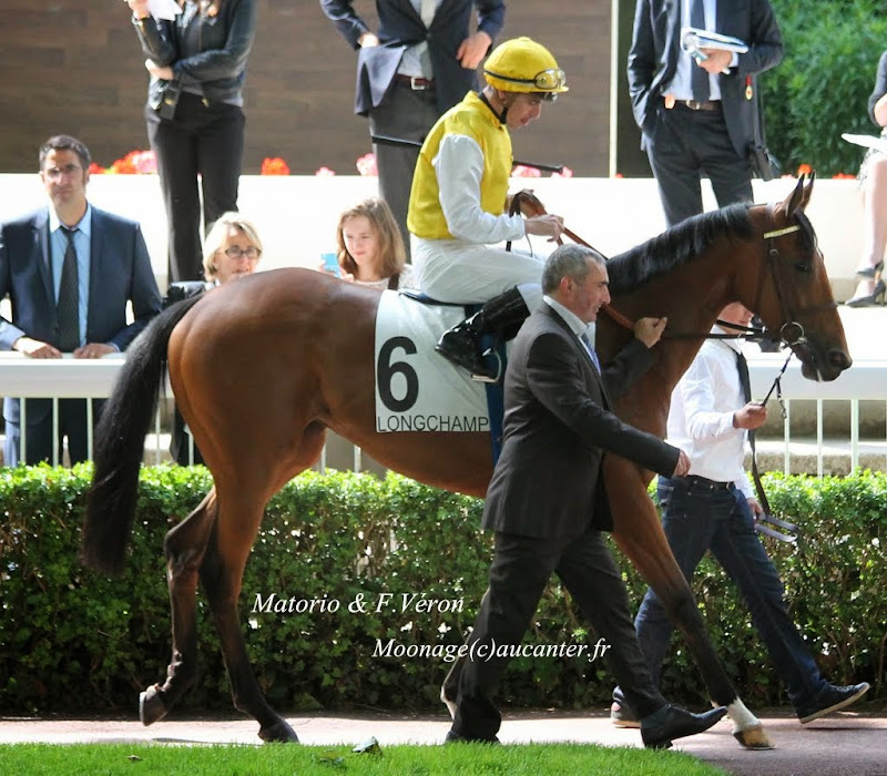 Photos Longchamp 25-05-2014 IMG_1301