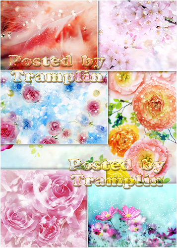 ���� � ������� � ��������� ������� - Backgrounds with flowerses and spangle diamond