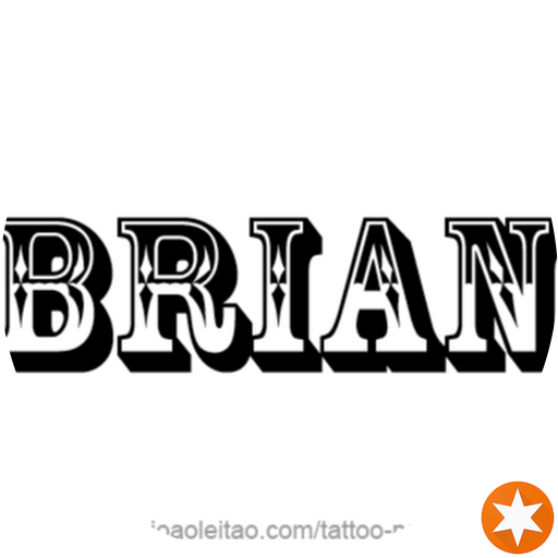 Brian Meche