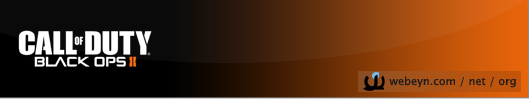 Call of Duty Black Ops 2 banner