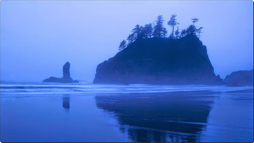Misty Coastline and Sea Stacks.jpg