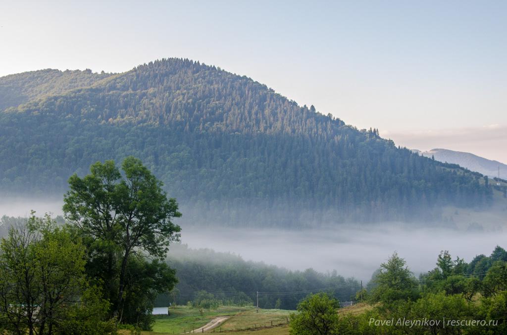 Утренний туман в Карпатах