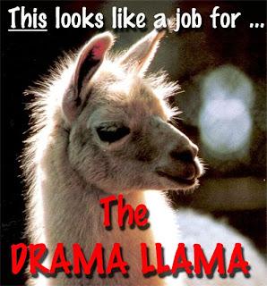 Drama%2BLlama.jpg