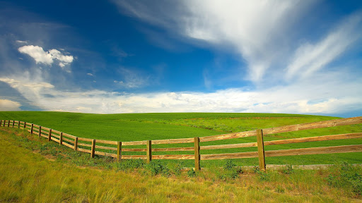 Afternoon in the Palouse Region, Washington.jpg