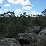 Nerang Viewpoint (306017)