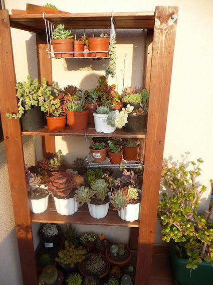 Mi peque o rinc n - Estanterias para plantas ...