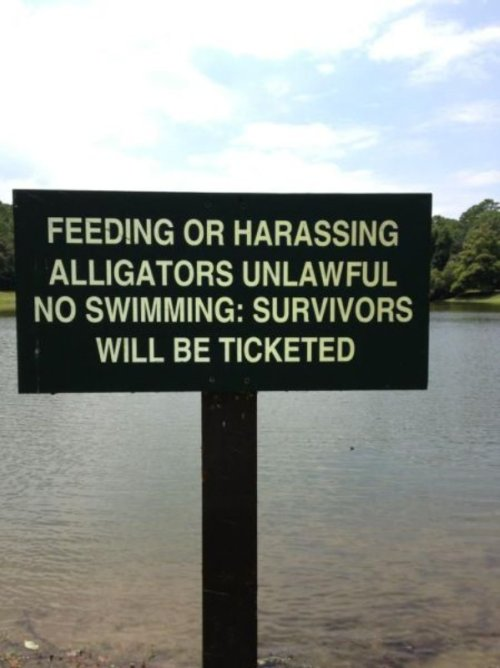 photo of a no swimming or feeding alligators sign