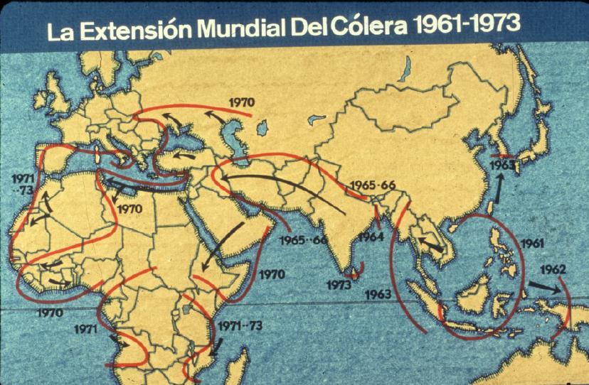 El círculo de las ideas: ¿Sabías que...? Epidemia, pandemia y endemia