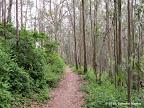 Mount Montara Trail.