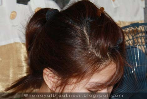 Revlon Colorsilk After Months  The Beauty Bin