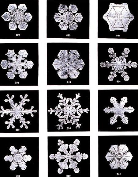 Alguns das infinitas formas de flocos de neve que podem ser criadas