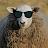 Nikcraft Niklashe avatar image