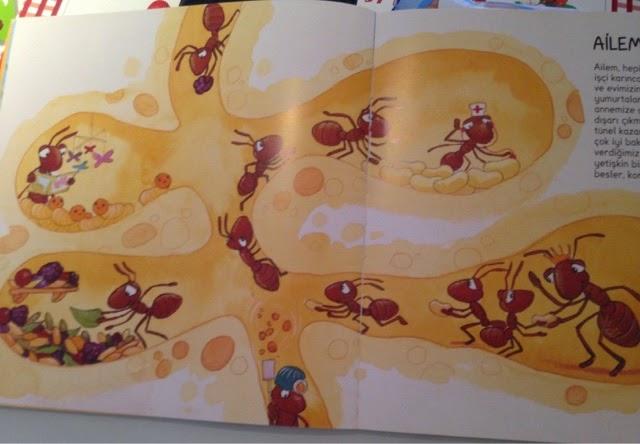 Kırmızı Domates çalışkan Karınca Teması