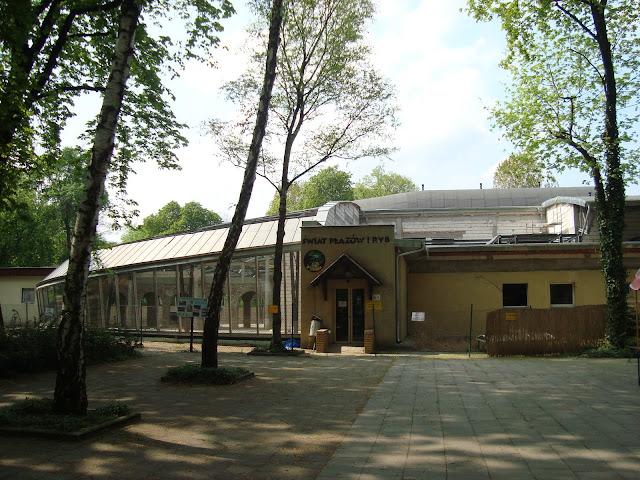 Widok na stare wejście do pawilonu