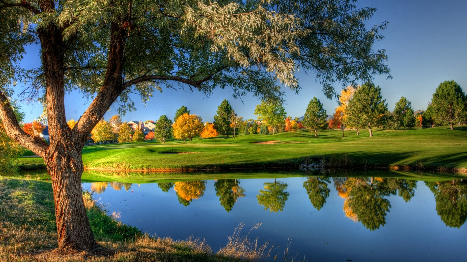Votre âme est parfois triste et vous recherchez la Paix ? Parcourez ce fil de discussion... Marvelous-autumn-landscape