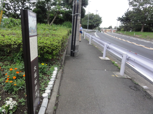 大坂松並木 東海道五十三次