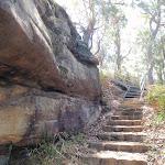Plenty of steps (201367)