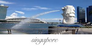 photo singapore_zpsa5de38b3.png