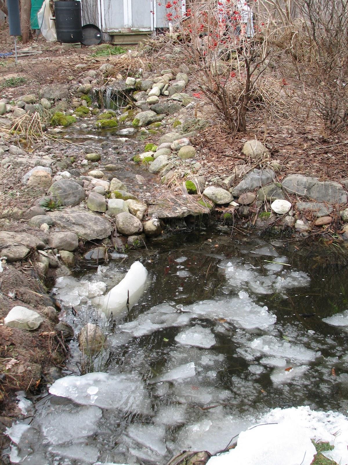 Stewardship Garden Starting Up For Pond And Stream For