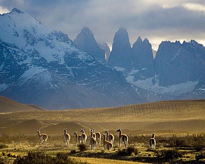Gurun Patagonia