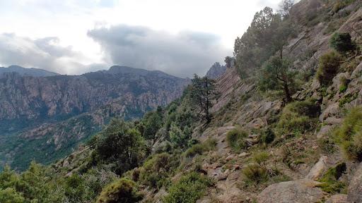 La traversée de maquis vers le rocher sous le col Capu d'Ortu - Signore Centrale