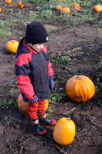 IMG_0410-2012-10-27-22-45.jpg