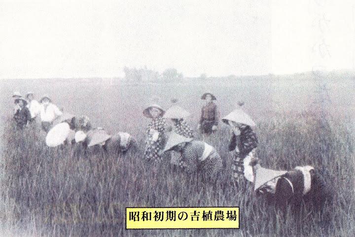 昭和初期の吉植農場