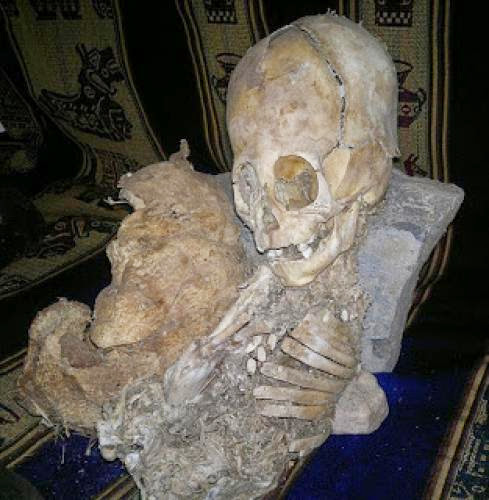 Alien Skull Found In Peru Claimed By Rpp What Reality Behind Latest Internet Buzz