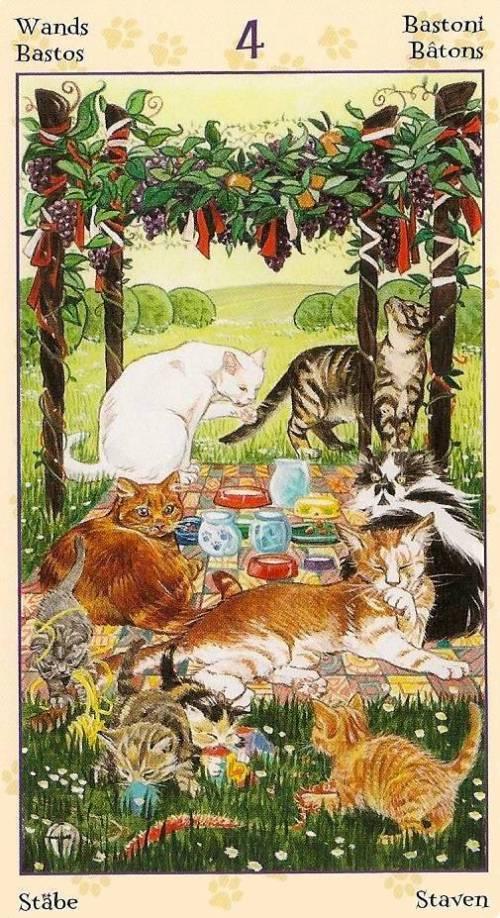 Tarot Notes A Journey Through My Tarot Decks The Magician: Tarot Notes: REVIEW (by Zanna): Tarot Of Pagan Cats
