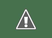 ARSENAL 51