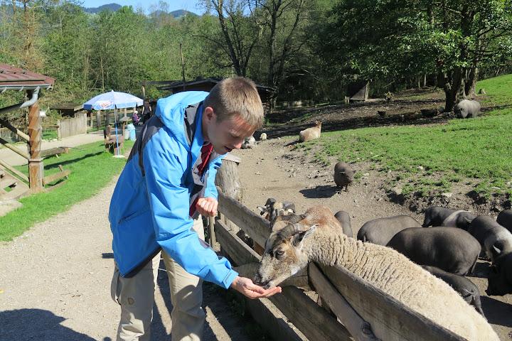 Natürlich habe ich die Tiere gefüttert