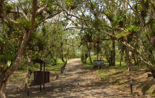 Parque Nacional Vulcão Arenal Gosto