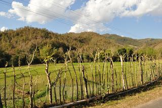 Hike near Luang Prabang