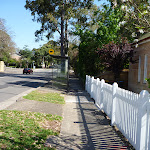 Walking along Ryde Rd (343711)