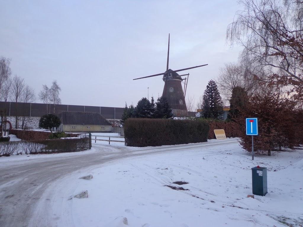 De  Bossche 100; NL; 100/110km, 110 pl. ; 24-25 janvier 2014 DSC00659