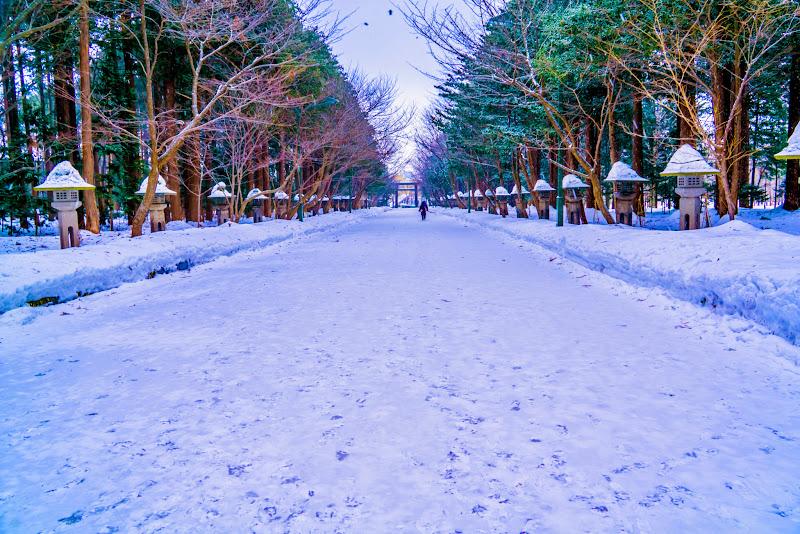 札幌 北海道神社 写真5