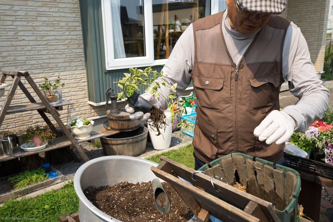 7.ビニールポットの底を切り取って、苗を差し込む時の保護シートに使用