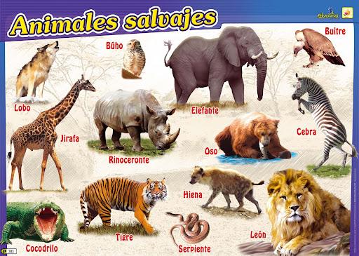 ANIMALES SALVAJES RECORTABLES INFANTIL PARA NIÑOS, DESCARGAR GRATIS Y A JUGAR!!