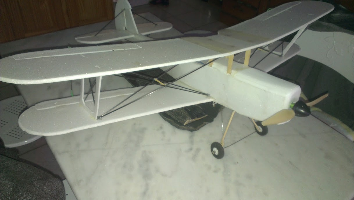 Stampe  - Page 2 IMAG0611