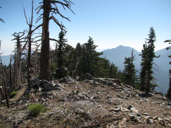 bit of trail along the ridge