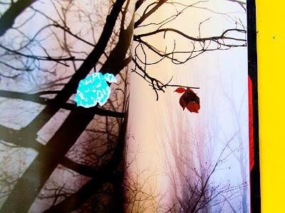 pàgines interiors artista Montse Comellas