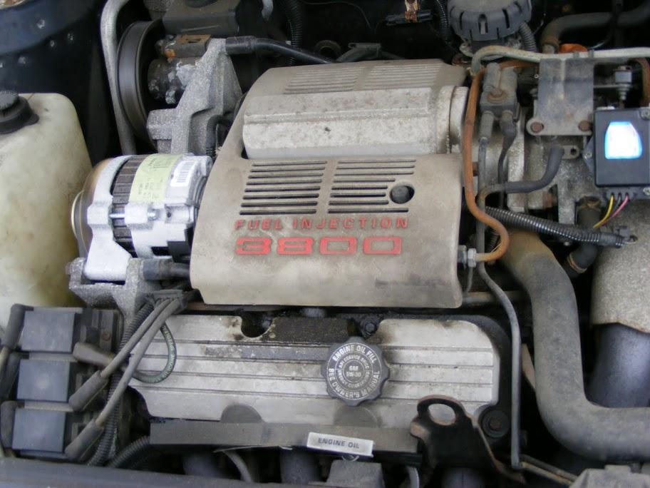 DSCF1117.JPG