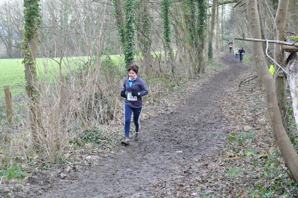 Trail des Marcassins Trail_ses_marcassins_2013%2520%2528782%2529