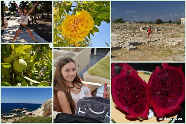 Кипр, Пафос, отдых на Кипре, фрукты,