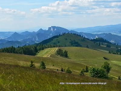 Widok na Pieninyszlak na szczyt Wysoka (Wysokie Skałki)