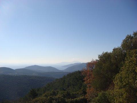Theangela-Etrim