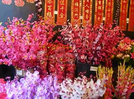 Chinese Lunar New Year in Singapore – Spring Festival
